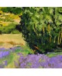 Landscape with lavander fields in Provence