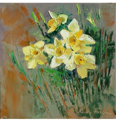Daffodils in nature