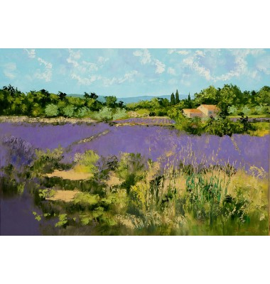 Farm with lavander