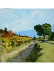 Path in autumn in Provence
