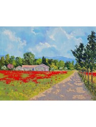 Poppies near the farm
