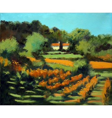 Fall lanscape with vineyard