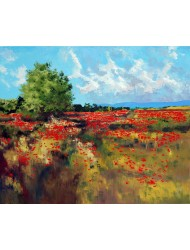 Poppies fields