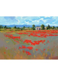 Farm with poppies fields