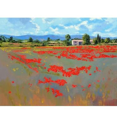 Farm with poppies fields