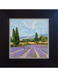 Landschaft mit Lavendel
