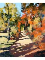 Potecă în pădure lîngă Roussillon