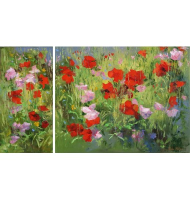 Wildflowers in nature