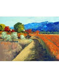 Late autumn at the foot of the Luberon
