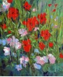 Wild flowers in front of my studio